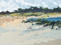Carmel Dunes